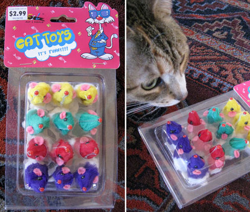 ecattoys1
